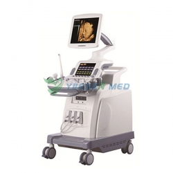 Sistema de ultrasonido YSB8000P Mobile 4D Color Doppler